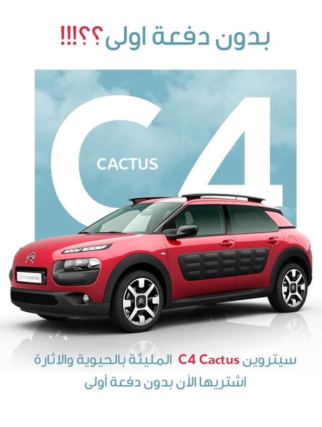 cactus_inner